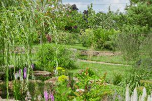Ландшафтное озеленение участка